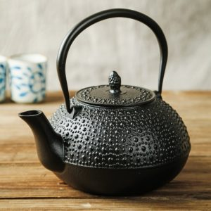 SUTEAS Japanese Tetsubin Tea Kettle